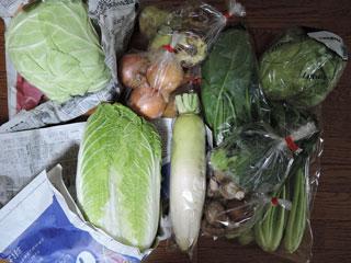 淡路産野菜
